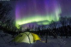 Revontulten alla - teltta tunneliteltta telttailu vaellus vaeltaminen retkeily retki talvivaellus talvivaeltaminen talviretkeily talvi talvinen lumi luminen yö yötaivas pakkanen Lappi talviteltta maisema talvimaisema talvitelttailu hanki lumihanki leiriytyä keltainen erä leiri yöpyä vaellusteltta retkiteltta tähtitaivas revontulet Aurora borealis vihreä vihreät värikäs aurinkotuuli revontuli