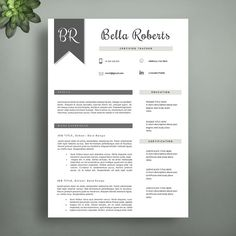 Creative Resume Template For Word  Pages By VisionTemplates - Elegant resume teacher resume template word