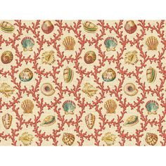Shop Waverly Shell Walks Wallpaper at Lowes.com