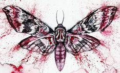 Ein besonderer Zauber im Sommer Moth, Animals, Insects, Animales, Poetry, Animaux, Animal, Animais