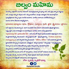 Lingashtakam song | lingashtakam song download | lingashtakam mp3.