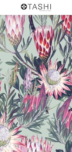 Protea, an exquisitely elegant yet vibrant pattern design with vintage style botanical illustrations that comes in a seamless pattern design along with Pattern Illustration, Botanical Illustration, Green Rooms, Surface Design, Pattern Design, Print Patterns, Vintage Fashion, Vibrant, Clip Art