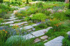 Meadow Garden, Garden Cottage, Dream Garden, Gravel Garden, Garden Landscaping, Landscaping Ideas, Sloped Garden, Garden Beds, Back Gardens