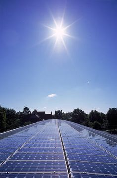 solar panels- why isn't this a common sight in our country? Oh yea, oil industry has other plans for us.