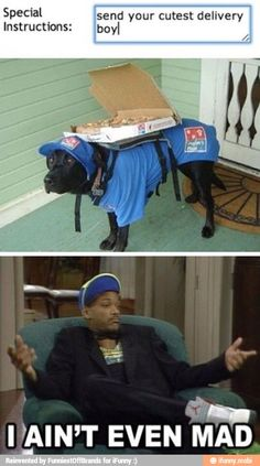 Cutest delivery boy / iFunny :)