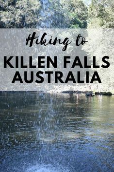Killen falls makes for a great place to cool down on a hot summers day. This is everything you need to know when visiting Killen Falls. Travel Advice, Travel Guides, Travel Tips, Australia Travel, Visit Australia, Byron Bay, Weekend Trips, Solo Travel, Aussies