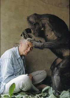 Forever Remembered, Jane Goodall