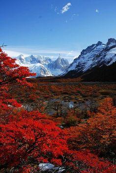 Otoño en Patagonia Cerro Fitz Roy es una de las dos montañas dentro del Parque Nacional Los Glaciares y uno de los dos destinos preferidos de senderismo en la Patagonia. La caminata impresionante también le permite tomar una excursión a Glaciar Perito Moreno, una de las mejores atracciones en el continente.