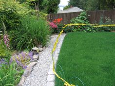 Path helps keep dogs off lawn