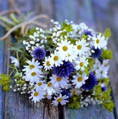 - Repinned by Prindler Productions - bouquet daisies, green blue, baby's breath