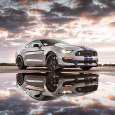 Ford Shelby Mustang GT350                                                                                                                                                     More