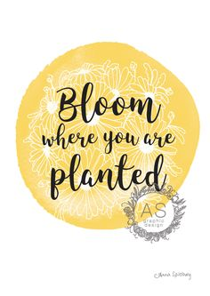Bloom where you are Planted-Yellow- PRINTABLE ART by AnnaSpilsburyDesign on Etsy https://www.etsy.com/au/listing/484382701/bloom-where-you-are-planted-yellow