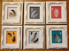 Presents for the crew of Bronte to remind them of all the feathers they had to sweep up every night! I think they look quite good as a little collection