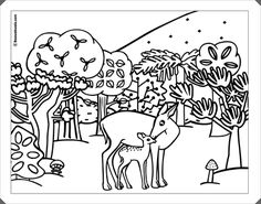 Ausmalbilder, Malvorlagen – Wald kostenlos zum Ausdrucken - Malvorlagen Wald…