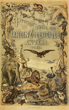 Promenade au jardin zoologique d'Anvers. Anvers :J.-E. Buschmann,1861 by BioDivLibrary, via Flickr