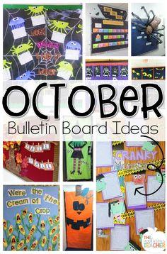 10 Best October Bull