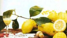 Limoni sotto grappa