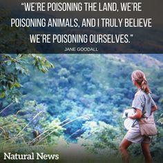 Jane Goodall speaks for many of us.