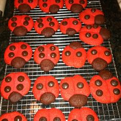 www.etsy.com/search?includes%5B%5D=tags=ladybug+cookies