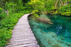 National park Plitvice lakes IV by ivancoric on DeviantArt Wooden Path, Clear Lake, Adriatic Sea, Real Pearls, Central Europe, Paths, Natural Beauty, Beautiful Places, National Parks
