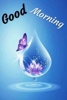 Good Morning Images For Whatsapp Flower Phone Wallpaper, Heart Wallpaper, Butterfly Wallpaper, Butterfly Art, Love Wallpaper, Cellphone Wallpaper, Galaxy Wallpaper, Wallpaper Backgrounds, Butterflies