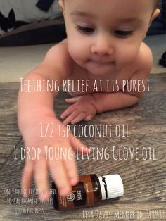 Clove Young Living Essential Oil for teething relief. Always use with a carrier oil and test on yourself before applying to baby's gums. Teething Baby Relief, Baby Teething Remedies, Essential Oils For Teething, Essential Oils For Babies, Young Living Essential Oils, Young Living Clove, Young Living Oils, Clove Essential Oil, Aromatherapy