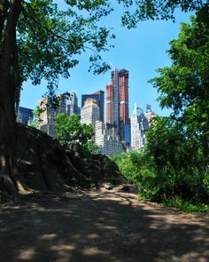 Central Park Skyline| http://thecaffeinateddaytripper.com/2014/05/05/new-york-city-photographic-tour-or-yes-i-probably-have-travelers-adhd-part-2/ #nyc #skyline