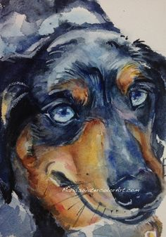 Old Blue Eyes dachshund watercolor painting by mariaswatercolor
