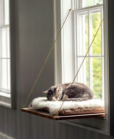 Cat Window Perch window ledge cat bed – diy instructions Related posts:Cuccioli irresistibili: tutte le specie animali di cui innamorarsiBABY SEA OTTER and Mom Photo, Baby Animal Nursery Art Print, Animal Nursery Decor, Baby. Cat Bed Diy, Diy Bed, Cat Beds, Beds For Cats, Cat House Diy, Dyi Dog Bed, Bunny Beds, Kitty House, Cat Tree House