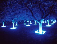 Beautiful and slightly eerie.  Would look amazing on an avenue of trees.  Heather Carson black/light/night/white/garden, 1999