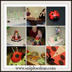 Ladybug Birthday Party Details