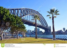 Sydney Harbour Bridge & Palm Trees From Dawes Point Park Editorial ...