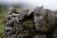 Carved stone heads in the 'stane dykes' beside the 'Grey Mare's Tail Burn', Talnotry, Scotland by Don Tiffney