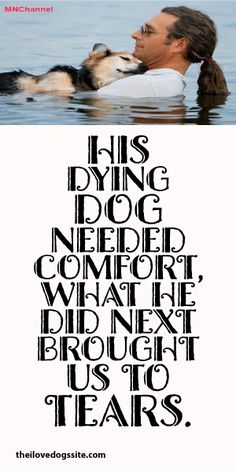 His Dying Dog Needed Comfort, What He Did Next Brought Us To Tears. Powerful!