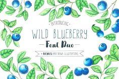 Wild Blueberry Font