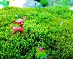 Little Deer Surreal Miniature Landscape