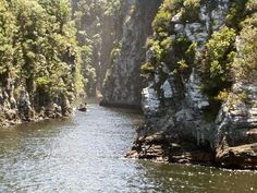Tsitsikamma National Park: My Favourite Place in South Africa.