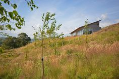 The Houl / Simon Winstanley Architects (15)