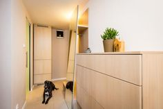 Chodba Divider, Room, Furniture, Home Decor, Bedroom, Decoration Home, Room Decor, Rooms, Home Furnishings