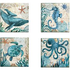 Portfolio Canvas Decor 'Monterey Bay Octopus' by Geoff Allen Gallery... ($71) ❤ liked on Polyvore featuring home, home decor, wall art, framed paintings, canvas panels, octopus home decor, ocean home decor and framed canvas wall art