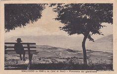 # MALOSCO: PANORAMA DAL GIARDINETTO (1931) in Collezionismo, Cartoline, Paesaggistiche italiane, Trentino Alto Adige, Trento | eBay