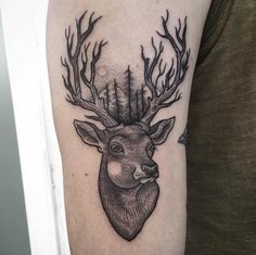 Line and dotwork stag tattoo by Surflanda