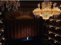 Chandelier, Ceiling Lights, Ballet, Home Decor, Dance, Life, Candelabra, Decoration Home, Room Decor