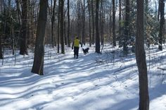 Winter hiking in Lakeridge