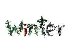 11 propuestas para disfrutar de lo mejor del invierno, una oferta de ocio singular y muy original - 11 proposals to enjoy the best of winter