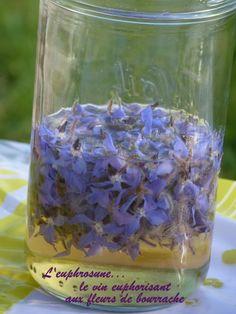 Euphrosune, ou vin euphorisant des anciens, tel est le nom donné à cet étonnant vin blanc aux fleurs de bourrache. Si l'on en croit la légende grecque, ce vin devrait sa réputation et son...