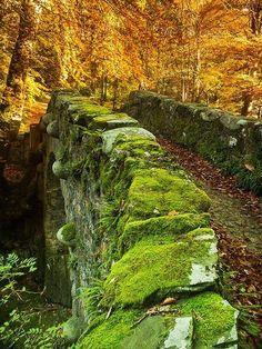 faerieschild: Medieval bridge in Nothern Ireland