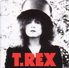 The Slider is the seventh studio album by British glam rock band T. Rex, released on 21 July 1972.