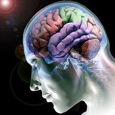 Enxergamos com o cérebro e não com os olhos...