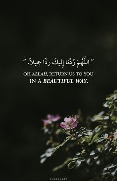 Discovered by Nader Dawah. Find images and videos about text, islam and arabic on We Heart It - the app to get lost in what you love. Islamic Phrases, Islamic Qoutes, Islamic Teachings, Muslim Quotes, Religious Quotes, Quran Quotes Love, Quran Quotes Inspirational, Beautiful Islamic Quotes, Arabic Quotes